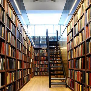 Библиотеки Ясного